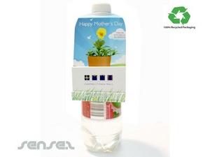 Seed Bücher - Bottle Neck Kleiderbügel